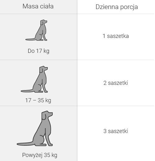 Cardio light dog