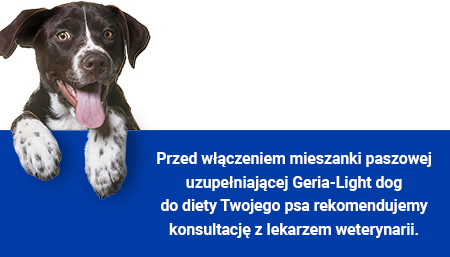 Geria Light Dog - pies w dobrej kondycji