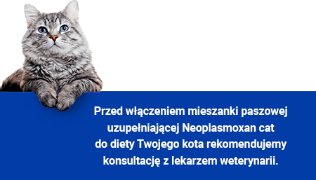 Neoplasmoxan cat
