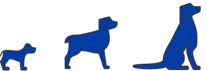Slimming-Light Dog