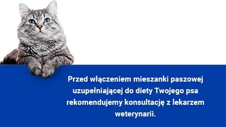 Immunoxan cat